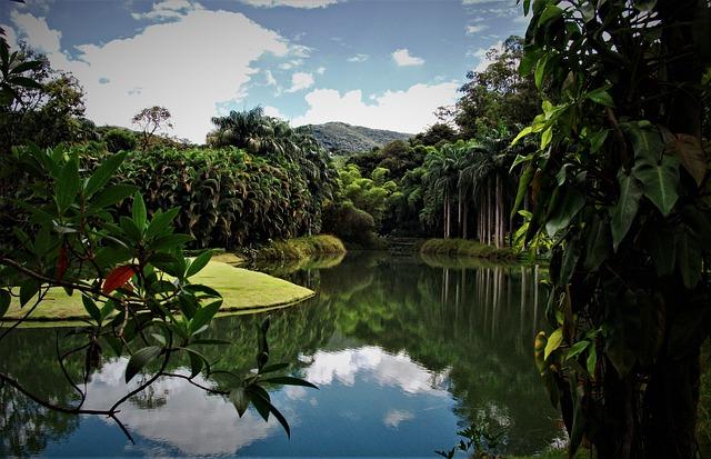 Quatro lugares para conhecer e se encantar em Minas Gerais